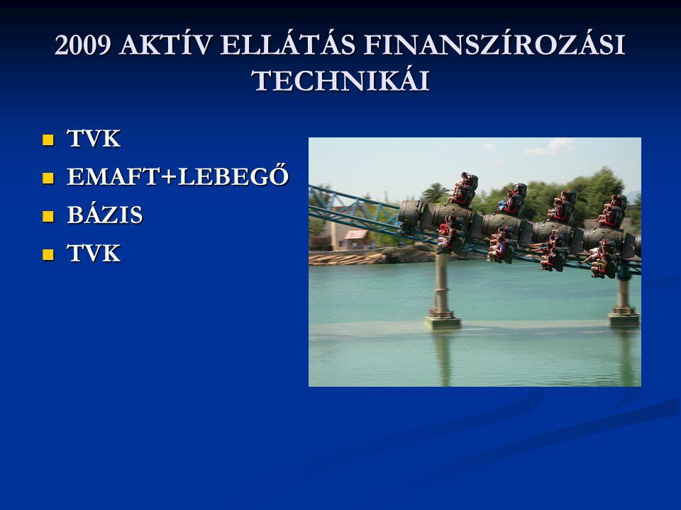 2009 AKTÍV ELLÁTÁS FINANSZÍROZÁSI TECHNIKÁI  TVK  EMAFT+LEBEGŐ  BÁZIS  TVK