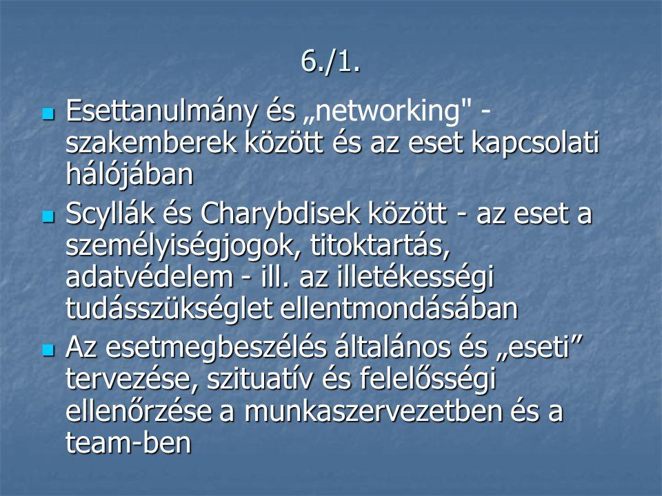 """6./1.  Esettanulmány és szakemberek között és az eset kapcsolati hálójában  Esettanulmány és """"networking"""