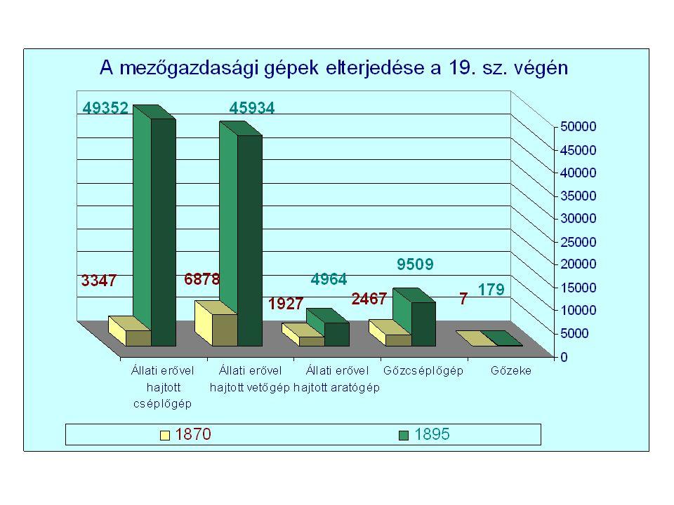A mezőgazdasági termelés átalakulásának eredményei: • Jelentősen nőtt az előállított termékek mennyisége – búza: 2,5; kukorica: 2; árpa, zab, rozs kb.