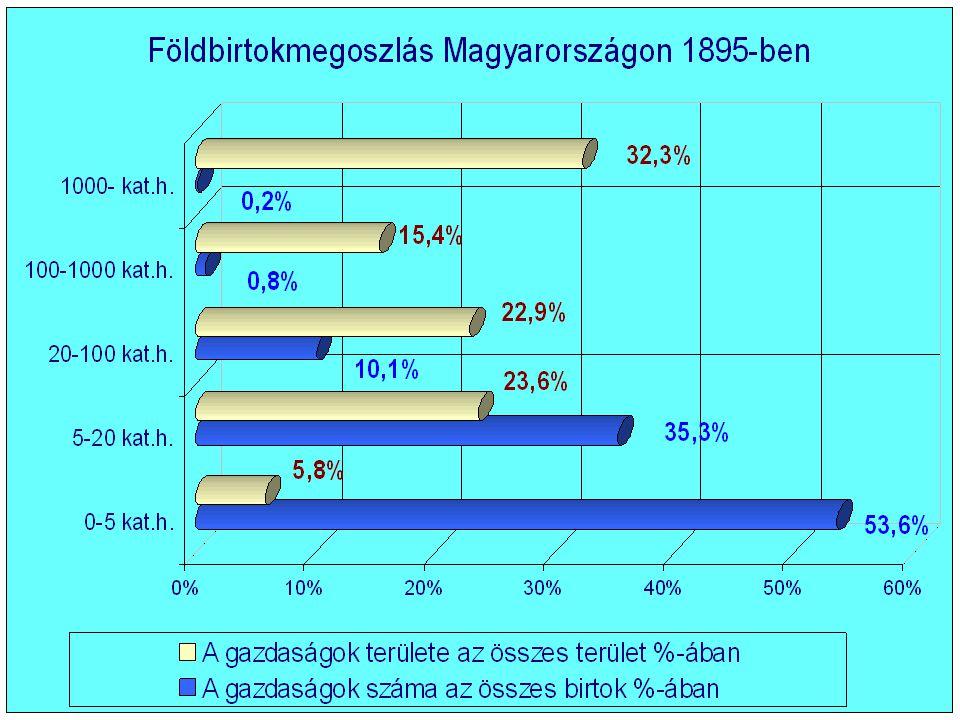 A mezőgazdasági üzemszervezet átalakulása a 19.sz.