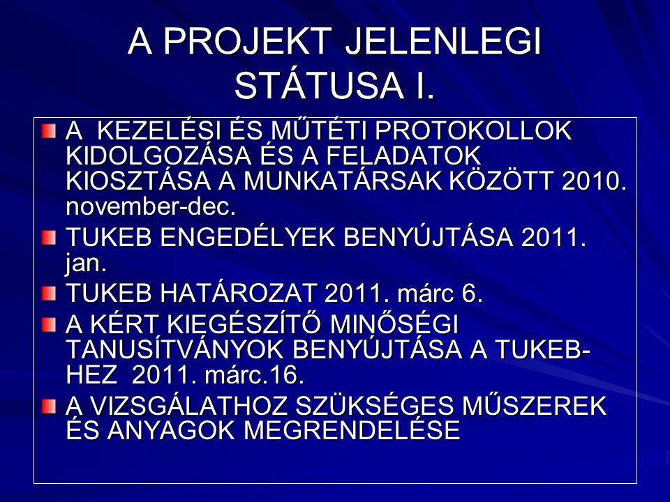A PROJEKT JELENLEGI STÁTUSA I.