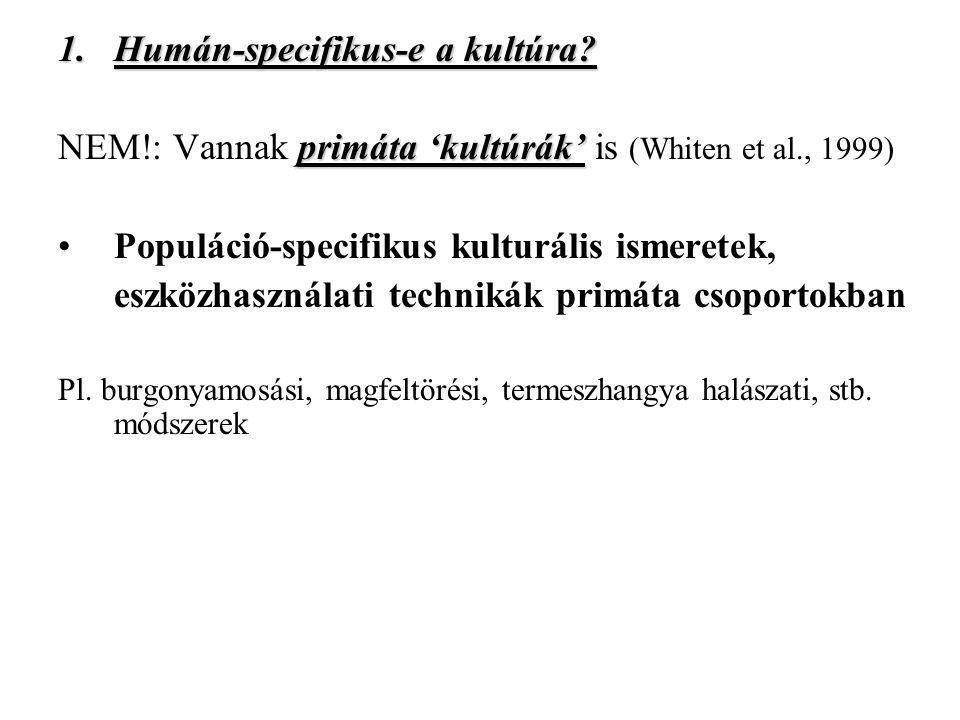 1.Humán-specifikus-e a kultúra.
