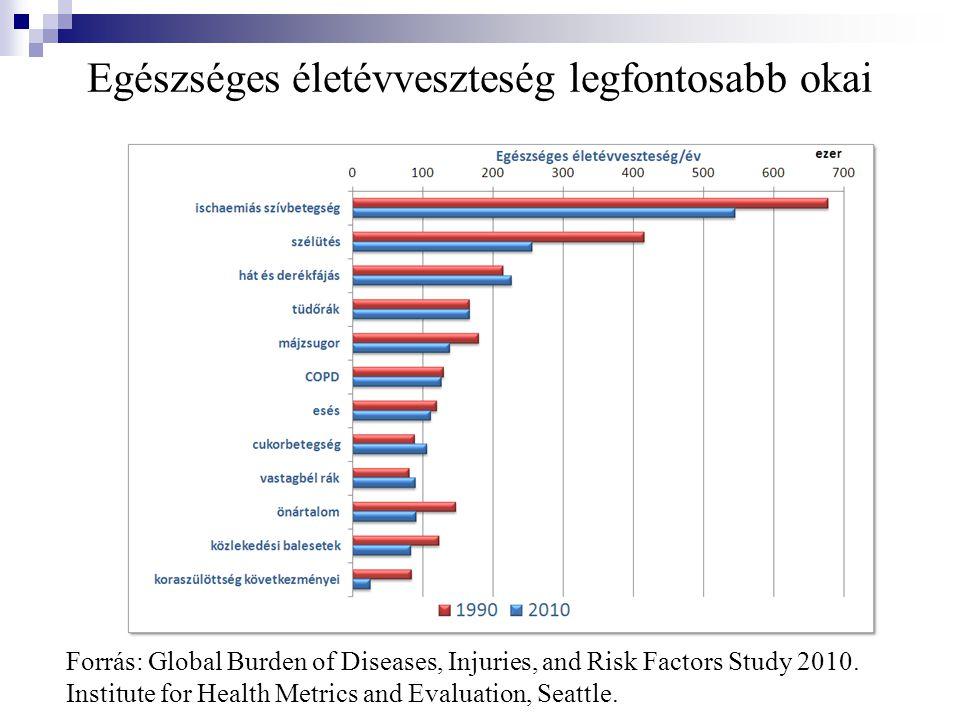 Egészséges életévveszteség legfontosabb okai Forrás: Global Burden of Diseases, Injuries, and Risk Factors Study 2010.