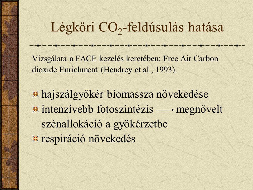 Légköri CO 2 -feldúsulás hatása Vizsgálata a FACE kezelés keretében: Free Air Carbon dioxide Enrichment (Hendrey et al., 1993). hajszálgyökér biomassz