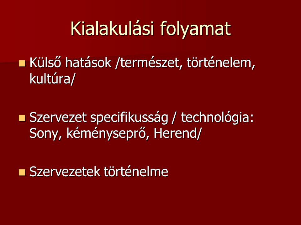 Kialakulási folyamat  Külső hatások /természet, történelem, kultúra/  Szervezet specifikusság / technológia: Sony, kéményseprő, Herend/  Szervezete