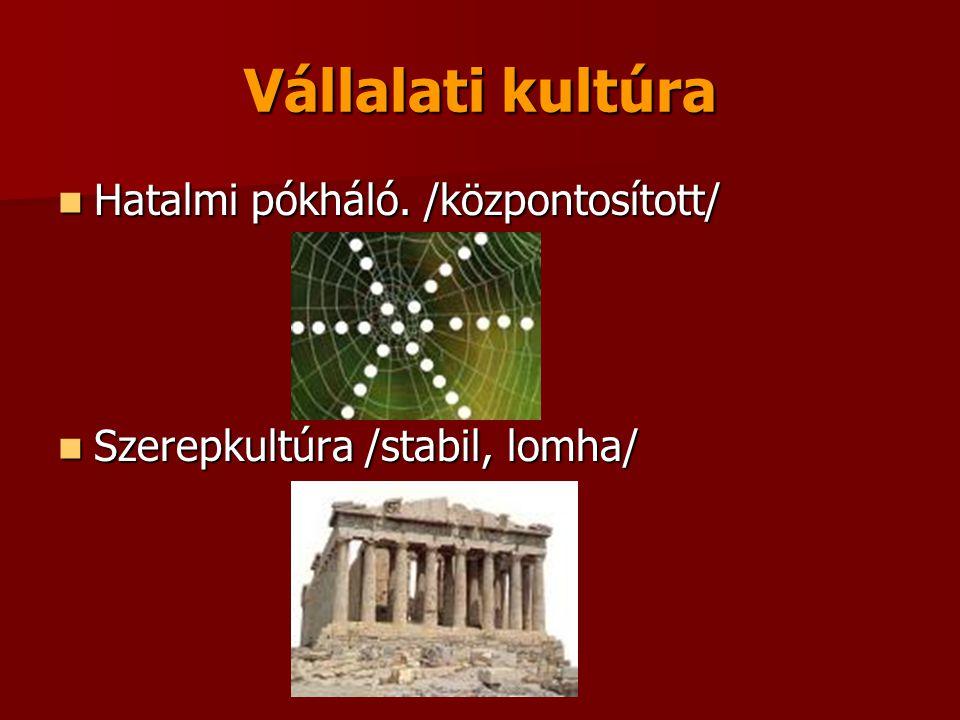 Vállalati kultúra  Hatalmi pókháló. /központosított/  Szerepkultúra /stabil, lomha/