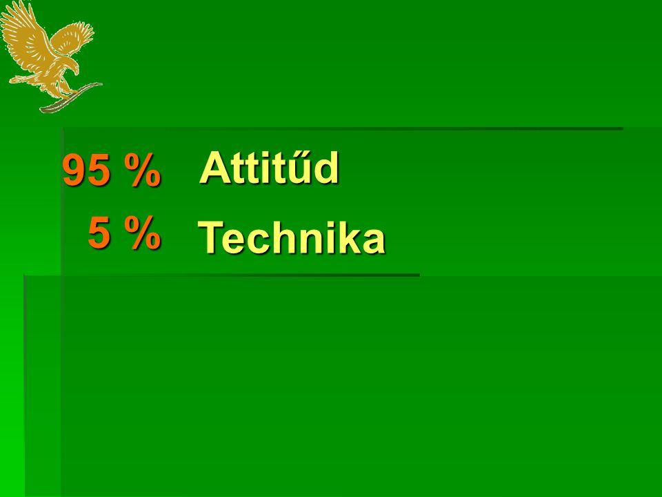 Attitűd Technika 95 % 5 % 5 %