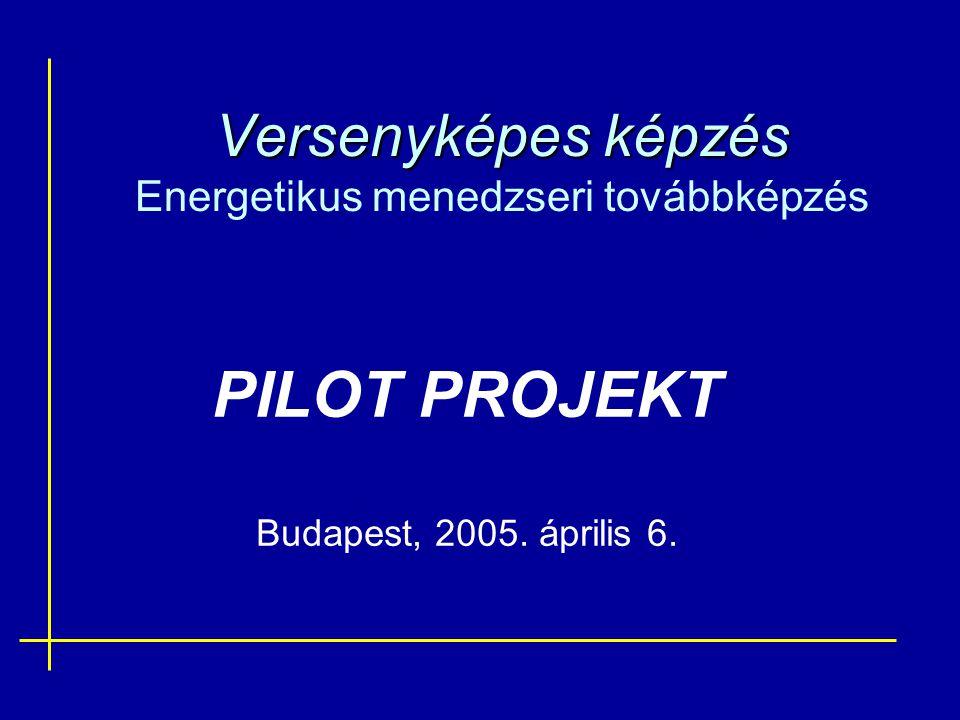 Versenyképes képzés Versenyképes képzés Energetikus menedzseri továbbképzés PILOT PROJEKT Budapest, 2005. április 6.