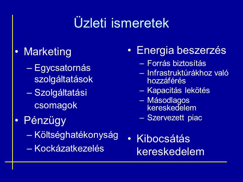 Üzleti ismeretek •Marketing –Egycsatornás szolgáltatások –Szolgáltatási csomagok •Pénzügy –Költséghatékonyság –Kockázatkezelés •Energia beszerzés –For