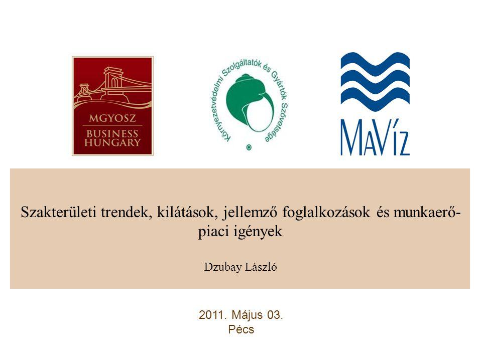 Szakterületi trendek, kilátások, jellemző foglalkozások és munkaerő- piaci igények Dzubay László 2011.