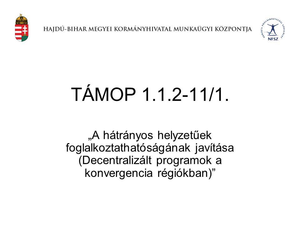 """TÁMOP 1.1.2-11/1. """"A hátrányos helyzetűek foglalkoztathatóságának javítása (Decentralizált programok a konvergencia régiókban)"""""""