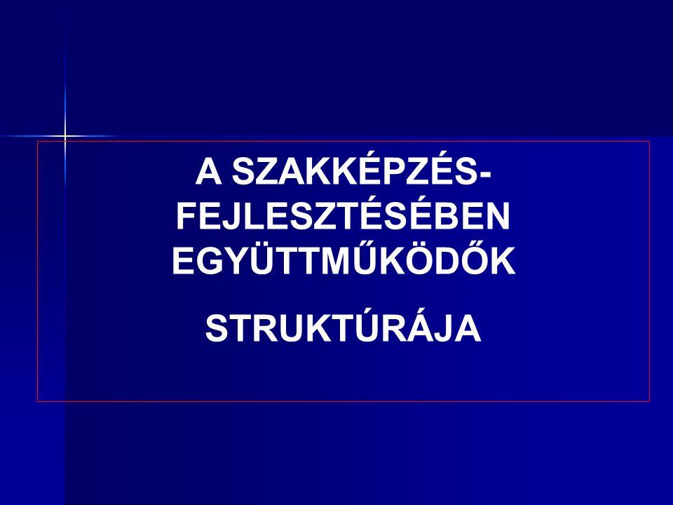 A SZAKKÉPZÉS- FEJLESZTÉSÉBEN EGYÜTTMŰKÖDŐK STRUKTÚRÁJA