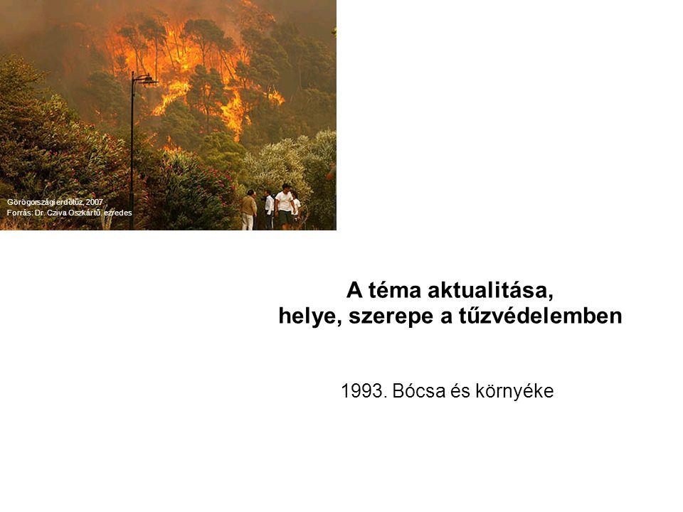 Erdőtüzek elmélete sejtautomata felfogásban In-silico technika Önszervező rendszer Védelmi rendszer szimulálása Görögországi erdőtűz, 2007 Forrás: Dr.
