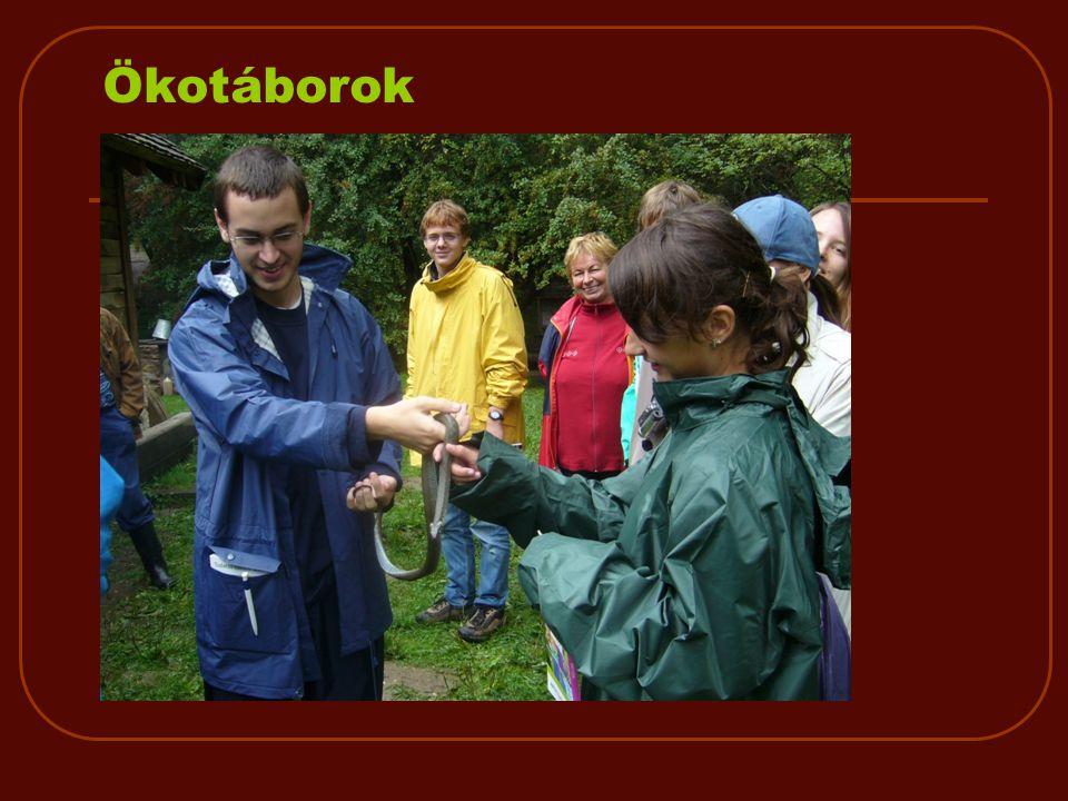 Ökotáborok  Környebánya  Agostyán  Tisza-tó  Ismeretek, élmények, életmód, szemlélet