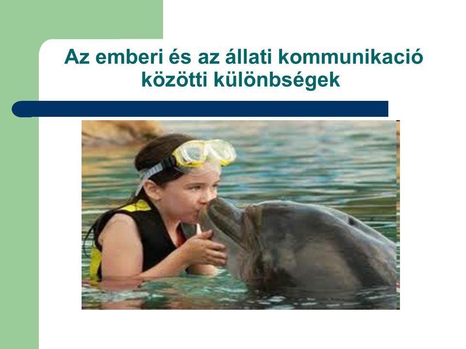 Az emberi és az állati kommunikació közötti különbségek