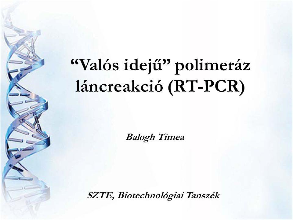 """""""Valós idejű"""" polimeráz láncreakció (RT-PCR) SZTE, Biotechnológiai Tanszék Balogh Tímea"""