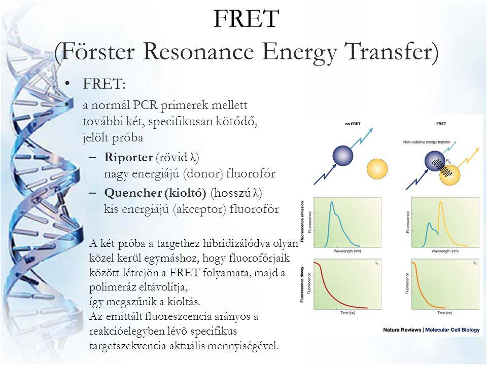 FRET (Förster Resonance Energy Transfer) • FRET: • a normál PCR primerek mellett további két, specifikusan kötődő, jelölt próba – Riporter (rövid λ) n