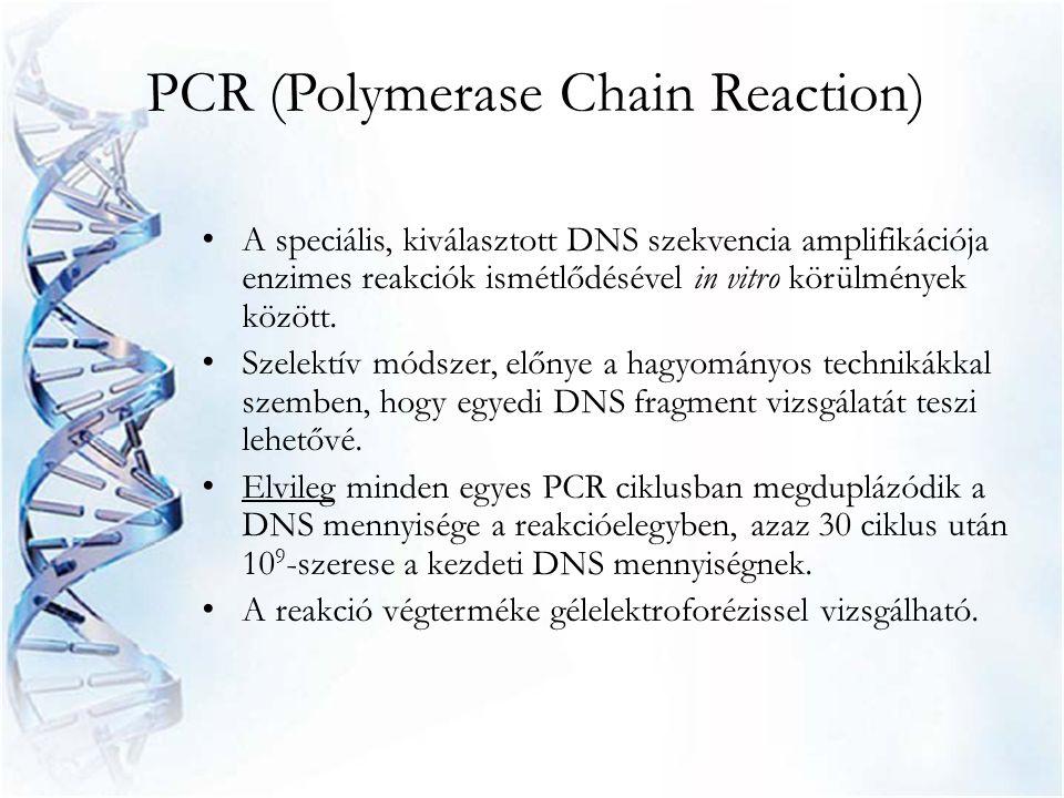 PCR (Polymerase Chain Reaction) • A speciális, kiválasztott DNS szekvencia amplifikációja enzimes reakciók ismétlődésével in vitro körülmények között.