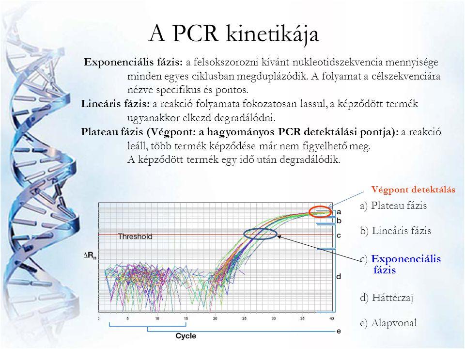 A PCR kinetikája Exponenciális fázis: a felsokszorozni kívánt nukleotidszekvencia mennyisége minden egyes ciklusban megduplázódik. A folyamat a célsze
