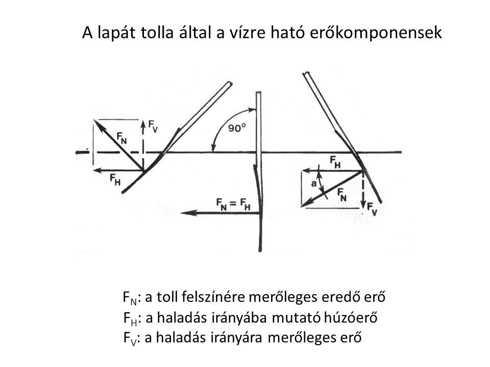 A lapát tolla által a vízre ható erőkomponensek F N : a toll felszínére merőleges eredő erő F H : a haladás irányába mutató húzóerő F V : a haladás ir