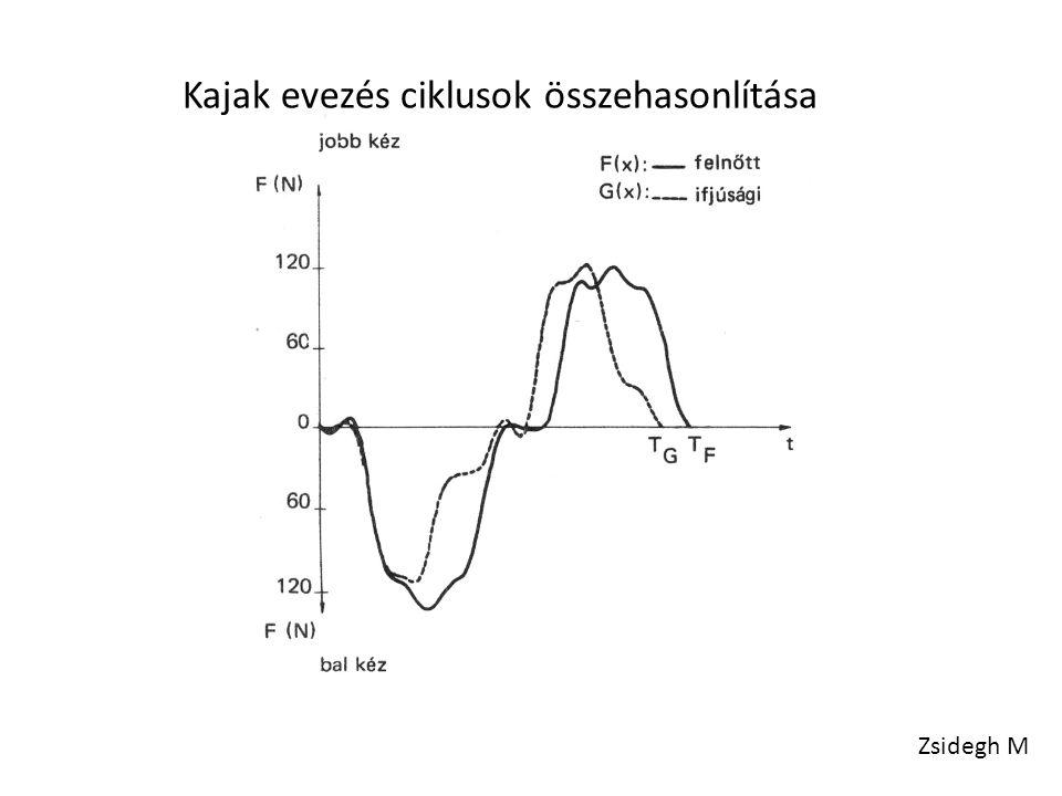 Kajak evezés ciklusok összehasonlítása Zsidegh M
