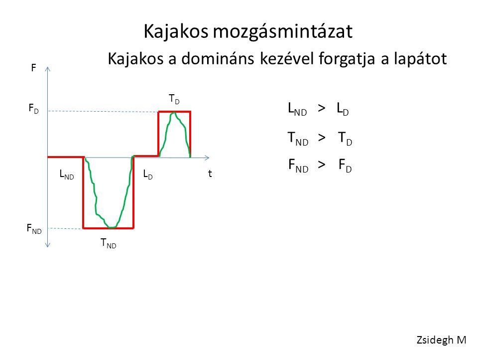 L ND LDLD T ND TDTD FDFD F ND LDLD L ND T ND TDTD F ND FDFD > > > Kajakos mozgásmintázat Kajakos a domináns kezével forgatja a lapátot F t Zsidegh M