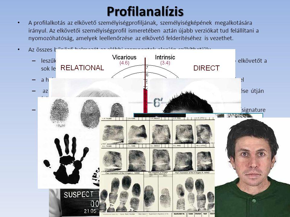 Profilanalízis • A profilalkotás az elkövető személyiségprofiljának, személyiségképének megalkotására irányul. Az elkövetői személyiségprofil ismereté