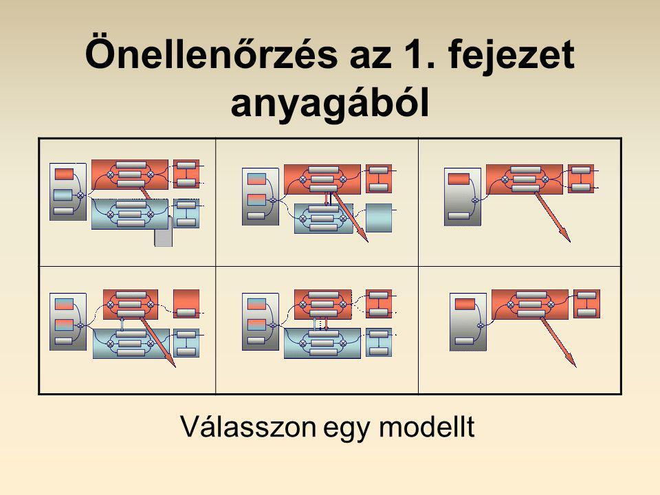 Önellenőrzés az 1. fejezet anyagából Válasszon egy modellt