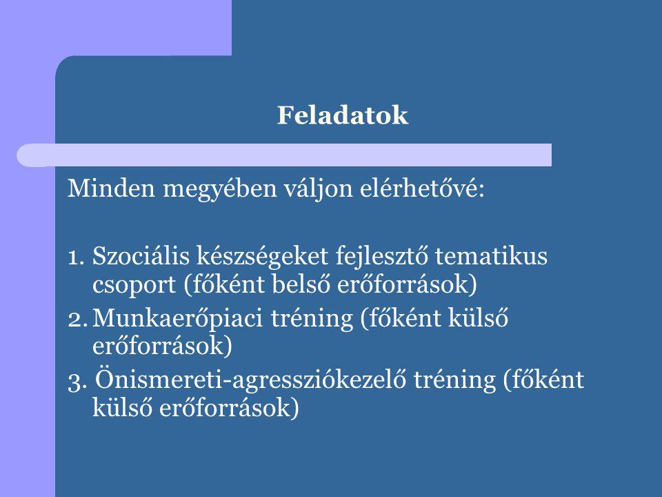 Feladatok Minden megyében váljon elérhetővé: 1.Szociális készségeket fejlesztő tematikus csoport (főként belső erőforrások) 2.Munkaerőpiaci tréning (főként külső erőforrások) 3.