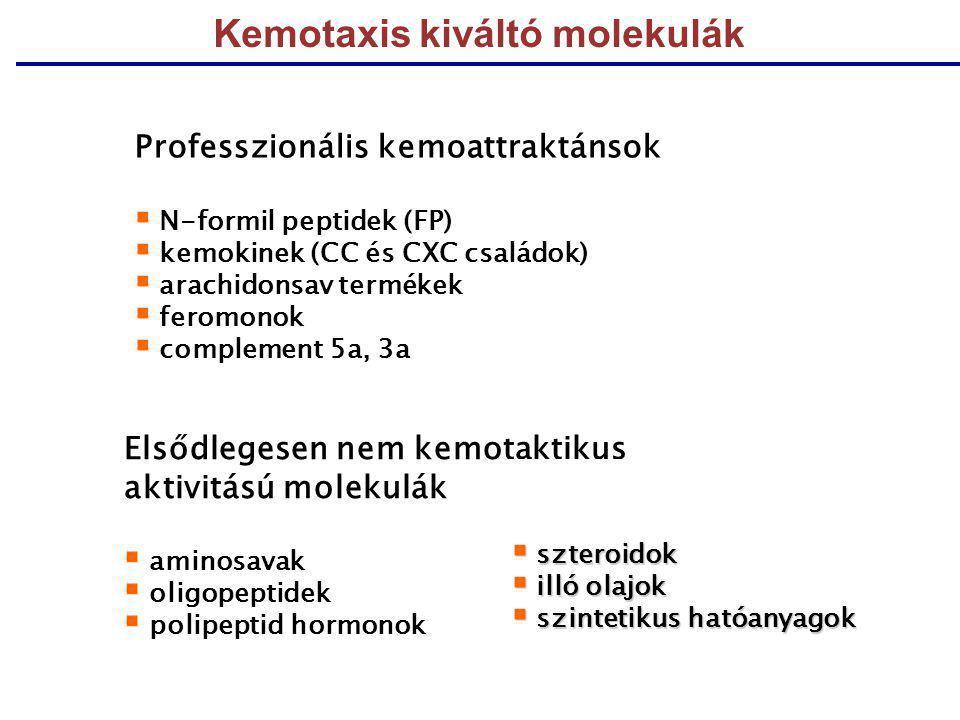 Kemotaxis kiváltó molekulák Professzionális kemoattraktánsok  N-formil peptidek (FP)  kemokinek (CC és CXC családok)  arachidonsav termékek  ferom