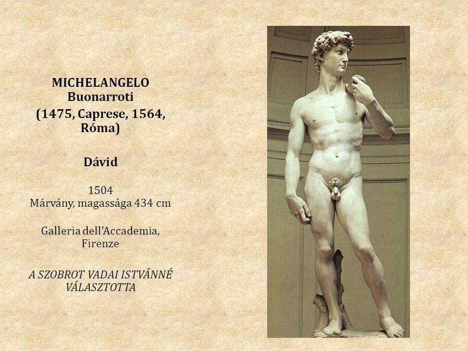 MICHELANGELO Buonarroti (1475, Caprese, 1564, Róma) Dávid 1504 Márvány, magassága 434 cm Galleria dell'Accademia, Firenze A SZOBROT VADAI ISTVÁNNÉ VÁL