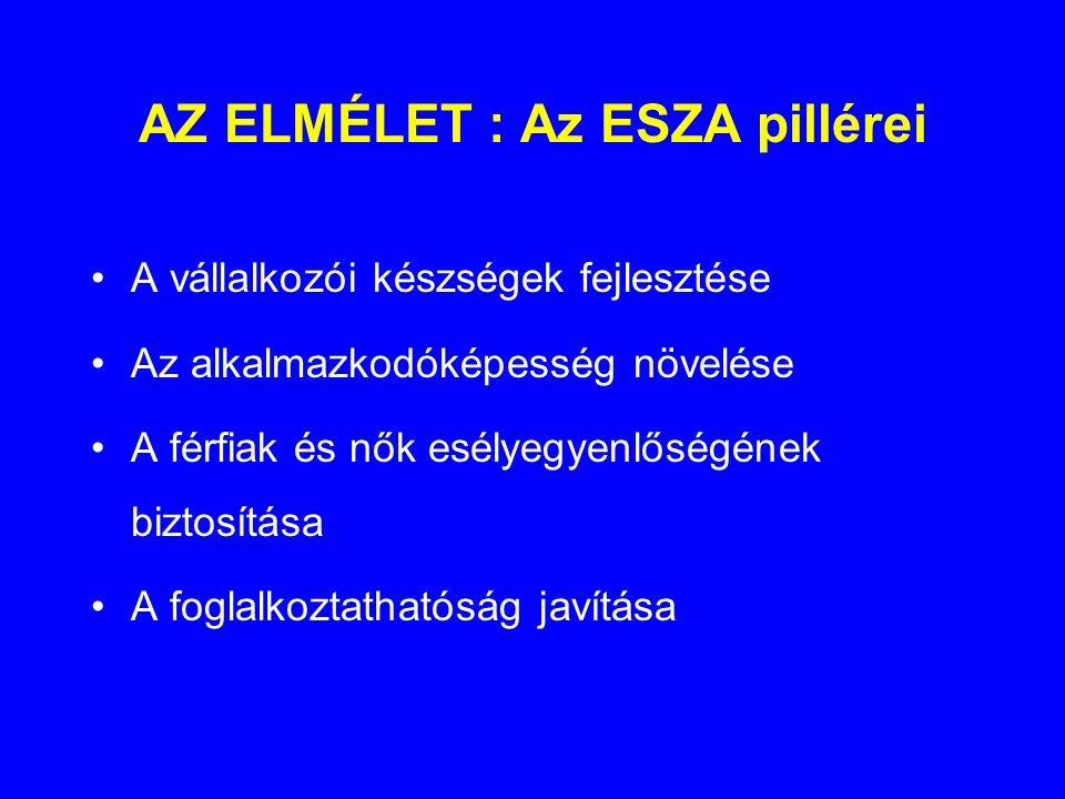AZ ELMÉLET : Az ESZA pillérei •A vállalkozói készségek fejlesztése •Az alkalmazkodóképesség növelése •A férfiak és nők esélyegyenlőségének biztosítása •A foglalkoztathatóság javítása