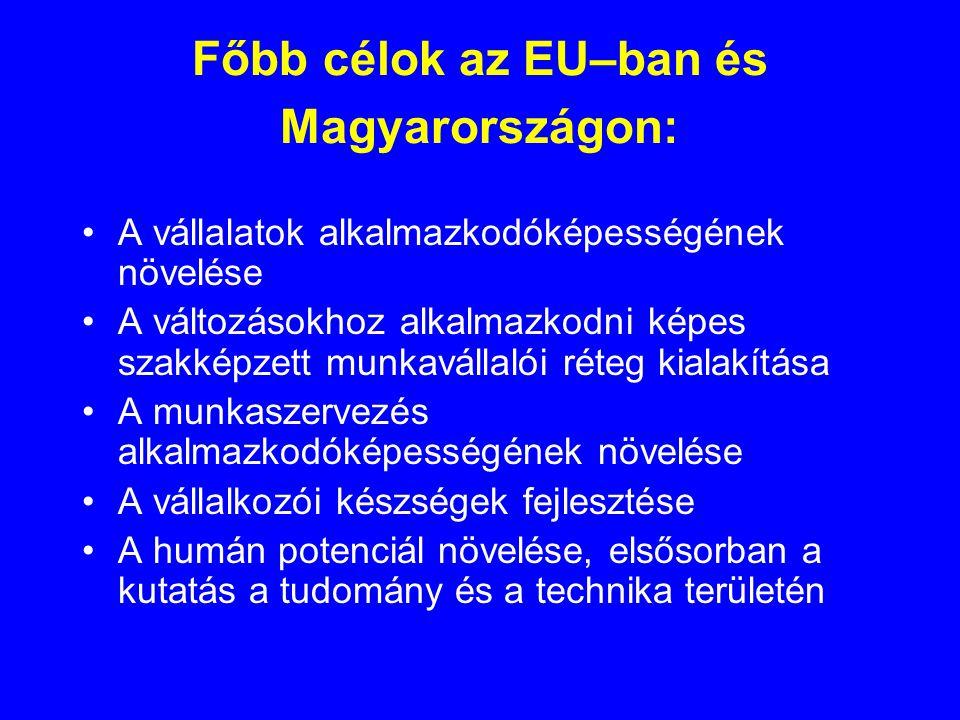 Főbb célok az EU–ban és Magyarországon: •A vállalatok alkalmazkodóképességének növelése •A változásokhoz alkalmazkodni képes szakképzett munkavállalói réteg kialakítása •A munkaszervezés alkalmazkodóképességének növelése •A vállalkozói készségek fejlesztése •A humán potenciál növelése, elsősorban a kutatás a tudomány és a technika területén