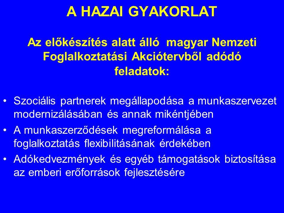 A HAZAI GYAKORLAT Az előkészítés alatt álló magyar Nemzeti Foglalkoztatási Akciótervből adódó feladatok: •Szociális partnerek megállapodása a munkaszervezet modernizálásában és annak mikéntjében •A munkaszerződések megreformálása a foglalkoztatás flexibilitásának érdekében •Adókedvezmények és egyéb támogatások biztosítása az emberi erőforrások fejlesztésére