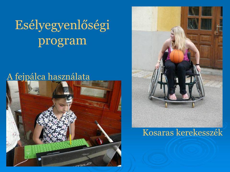 Esélyegyenlőségi program A fejpálca használata Kosaras kerekesszék