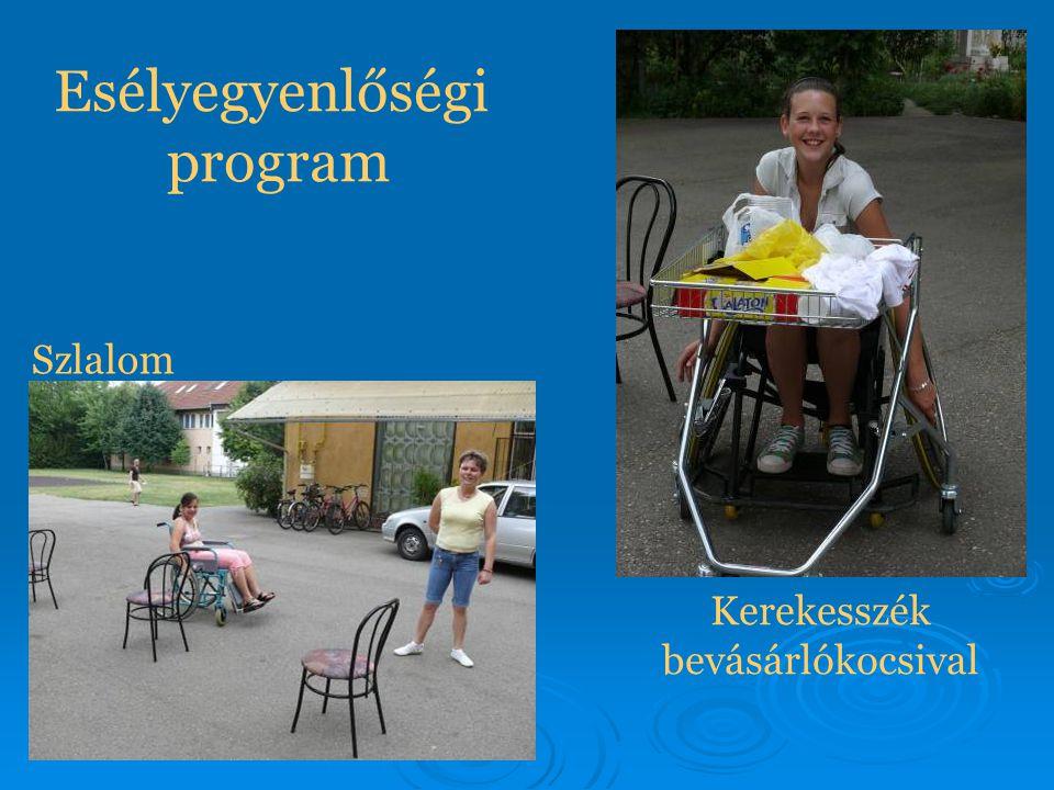 Esélyegyenlőségi program Szlalom Kerekesszék bevásárlókocsival