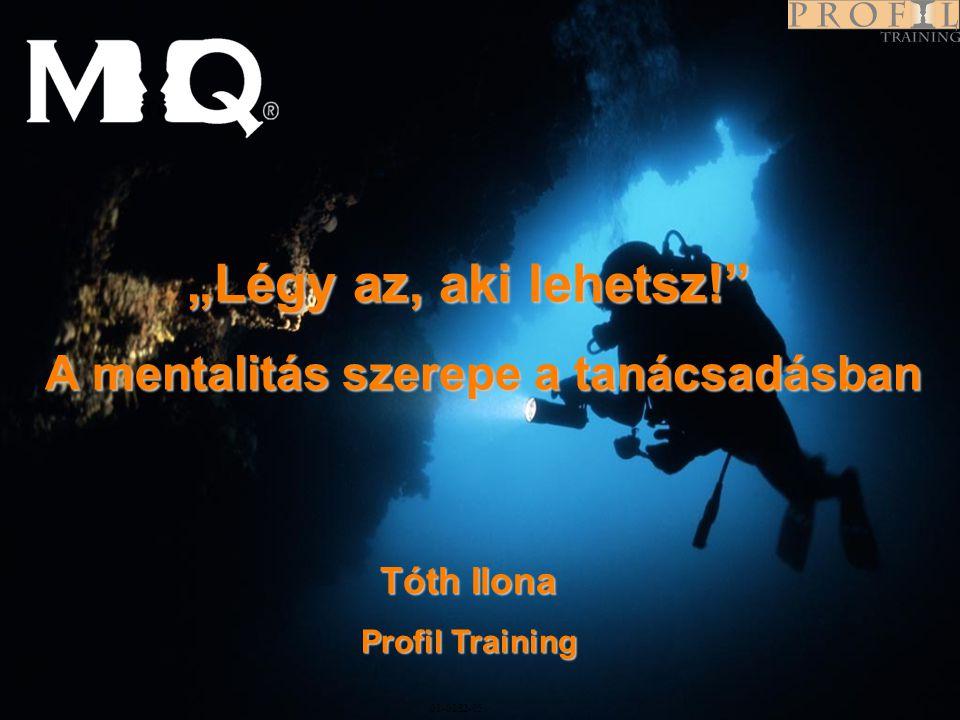 """Program 01-0282-05 """"Légy az, aki lehetsz!"""" A mentalitás szerepe a tanácsadásban A mentalitás szerepe a tanácsadásban Tóth Ilona Profil Training"""