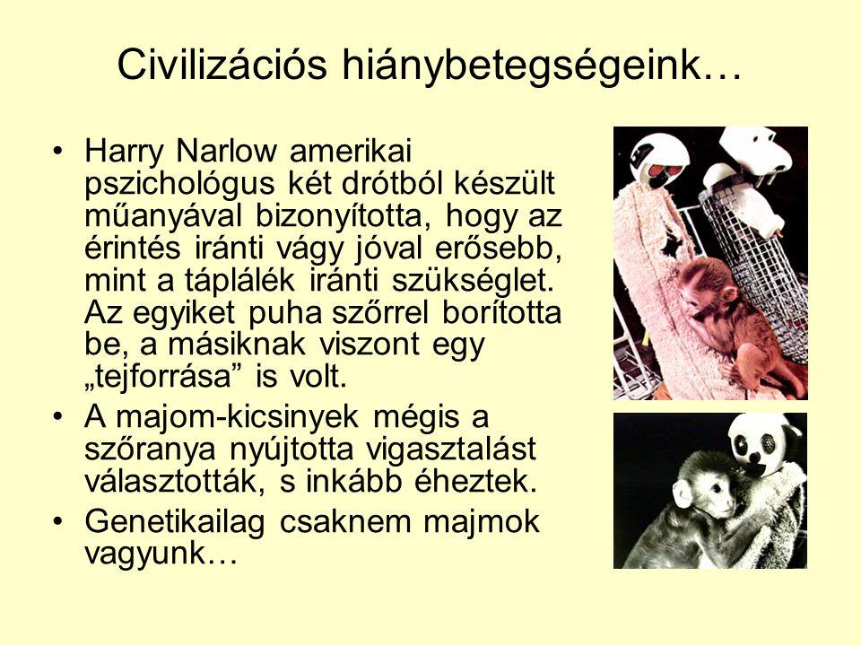 Civilizációs hiánybetegségeink… •Harry Narlow amerikai pszichológus két drótból készült műanyával bizonyította, hogy az érintés iránti vágy jóval erős