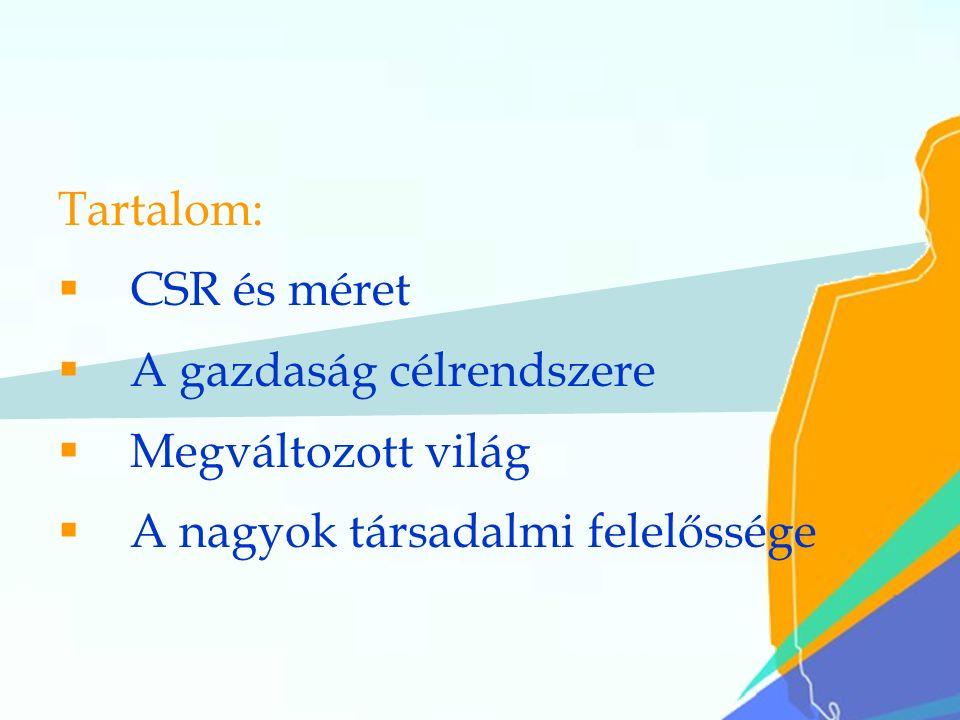15 Tartalom:  CSR és méret  A gazdaság célrendszere  Megváltozott világ  A nagyok társadalmi felelőssége
