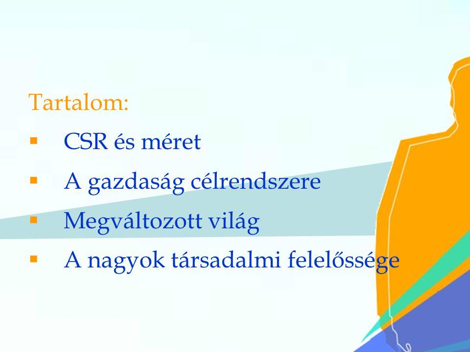 22 Tartalom:  CSR és méret  A gazdaság célrendszere  Megváltozott világ  A nagyok társadalmi felelőssége