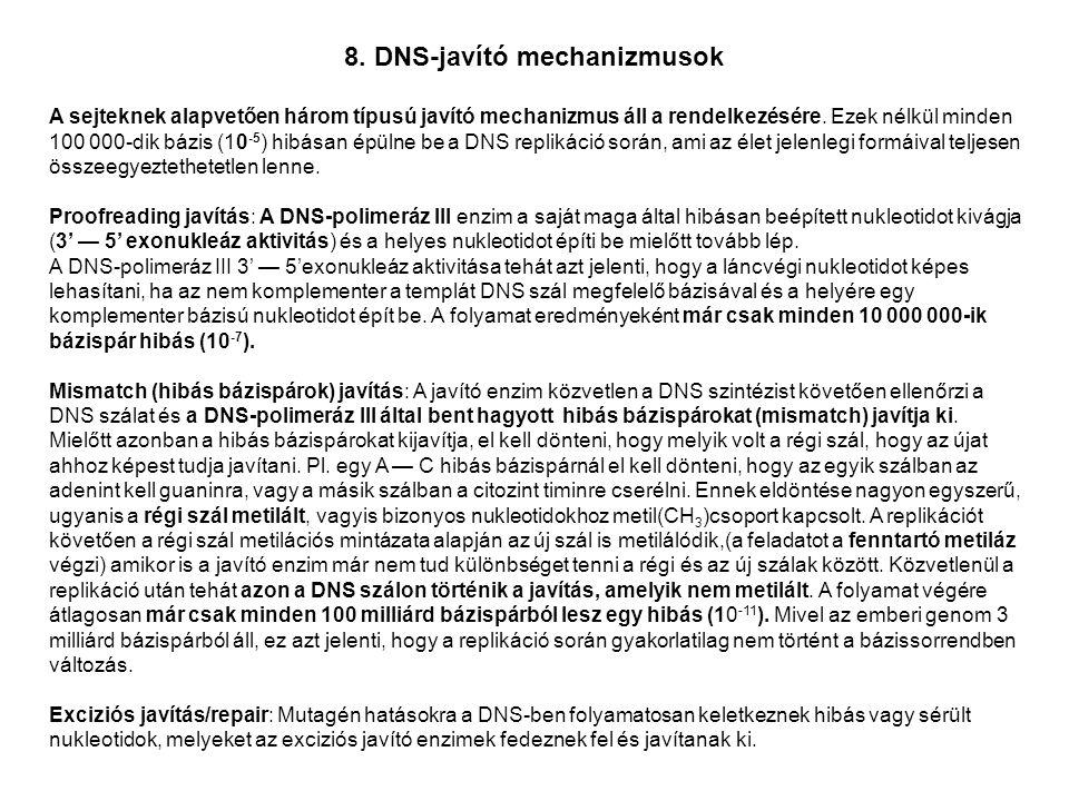 8. DNS-javító mechanizmusok A sejteknek alapvetően három típusú javító mechanizmus áll a rendelkezésére. Ezek nélkül minden 100 000-dik bázis (10 -5 )