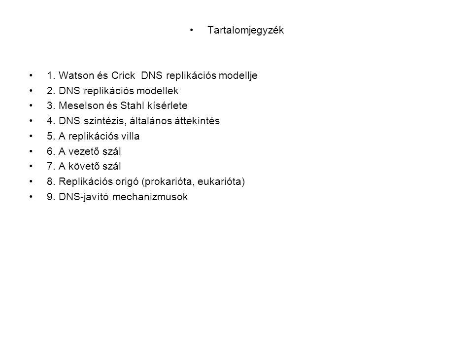 •Tartalomjegyzék •1.Watson és Crick DNS replikációs modellje •2.