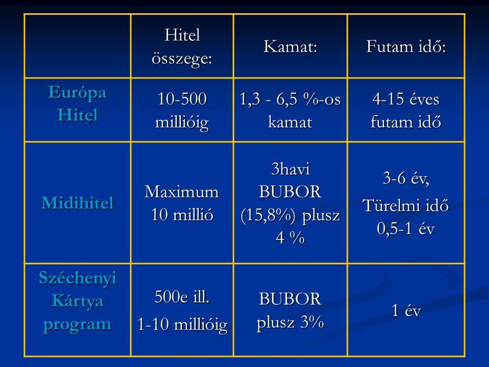 Hitel összege: Kamat: Futam idő: Európa Hitel 10-500 millióig 1,3 - 6,5 %-os kamat 4-15 éves futam idő Midihitel Maximum 10 millió 3havi BUBOR (15,8%) plusz 4 % 3-6 év, Türelmi idő 0,5-1 év Széchenyi Kártya program 500e ill.
