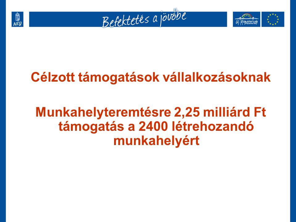 Célzott támogatások vállalkozásoknak Munkahelyteremtésre 2,25 milliárd Ft támogatás a 2400 létrehozandó munkahelyért
