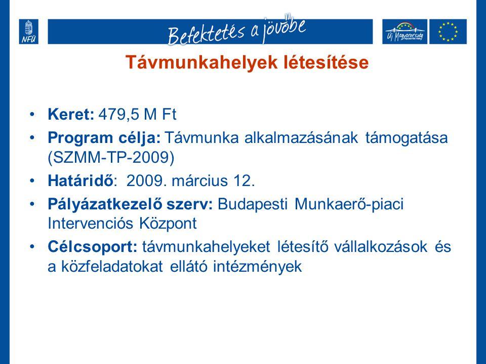 Távmunkahelyek létesítése •Keret: 479,5 M Ft •Program célja: Távmunka alkalmazásának támogatása (SZMM-TP-2009) •Határidő: 2009. március 12. •Pályázatk