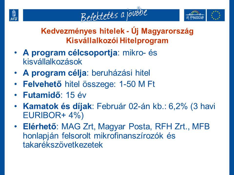 Kedvezményes hitelek - Új Magyarország Kisvállalkozói Hitelprogram •A program célcsoportja: mikro- és kisvállalkozások •A program célja: beruházási hi