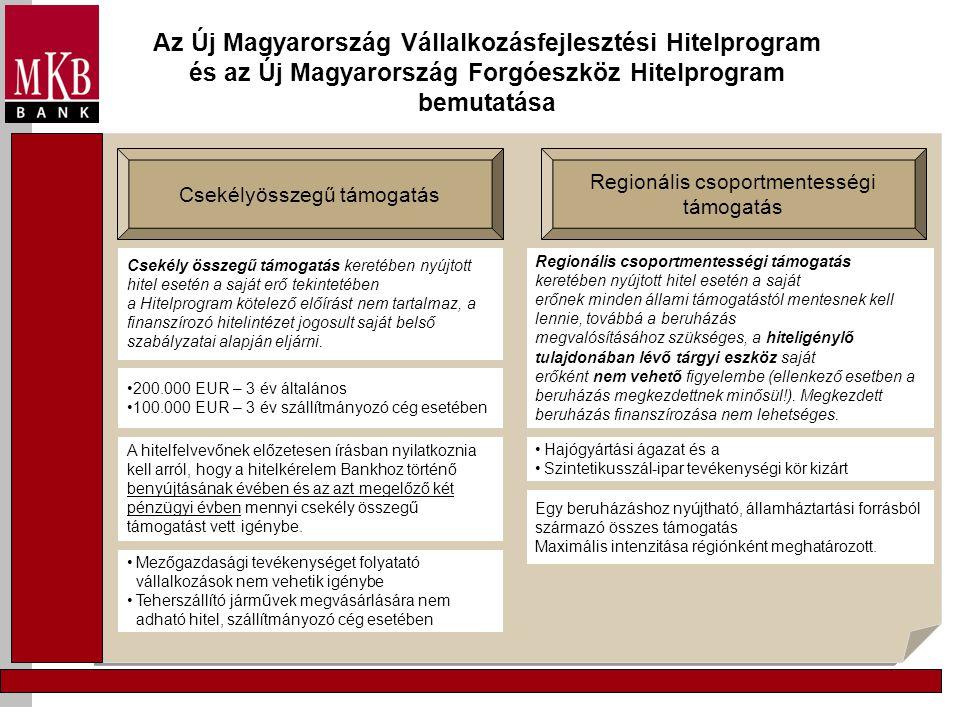 Az Új Magyarország Vállalkozásfejlesztési Hitelprogram és az Új Magyarország Forgóeszköz Hitelprogram bemutatása Csekélyösszegű támogatás Regionális c