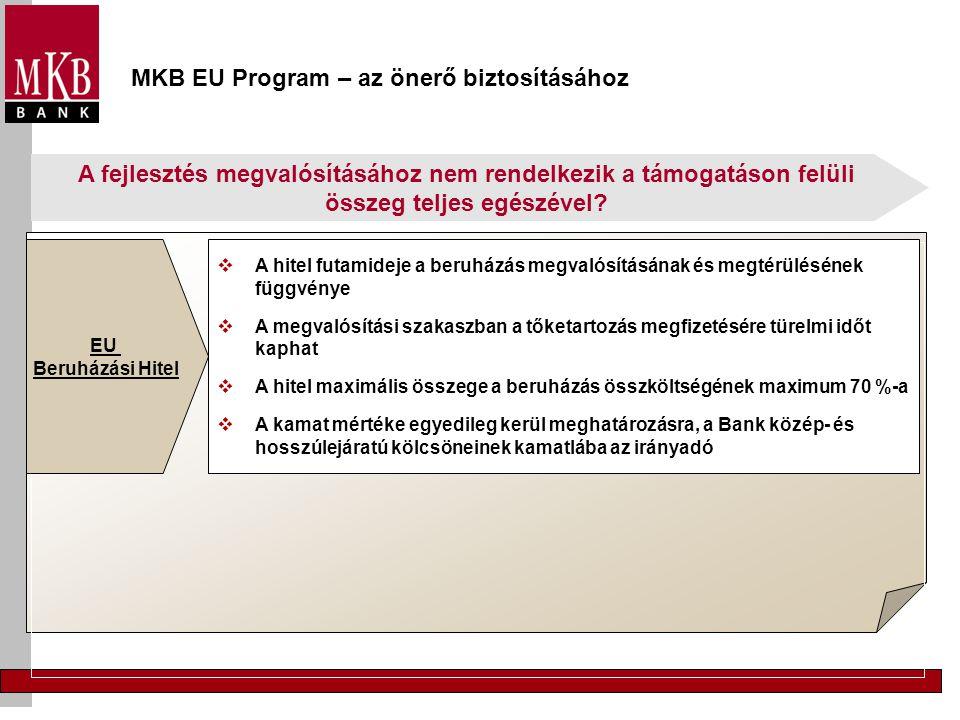 MKB EU Program – az önerő biztosításához A fejlesztés megvalósításához nem rendelkezik a támogatáson felüli összeg teljes egészével? EU Beruházási Hit