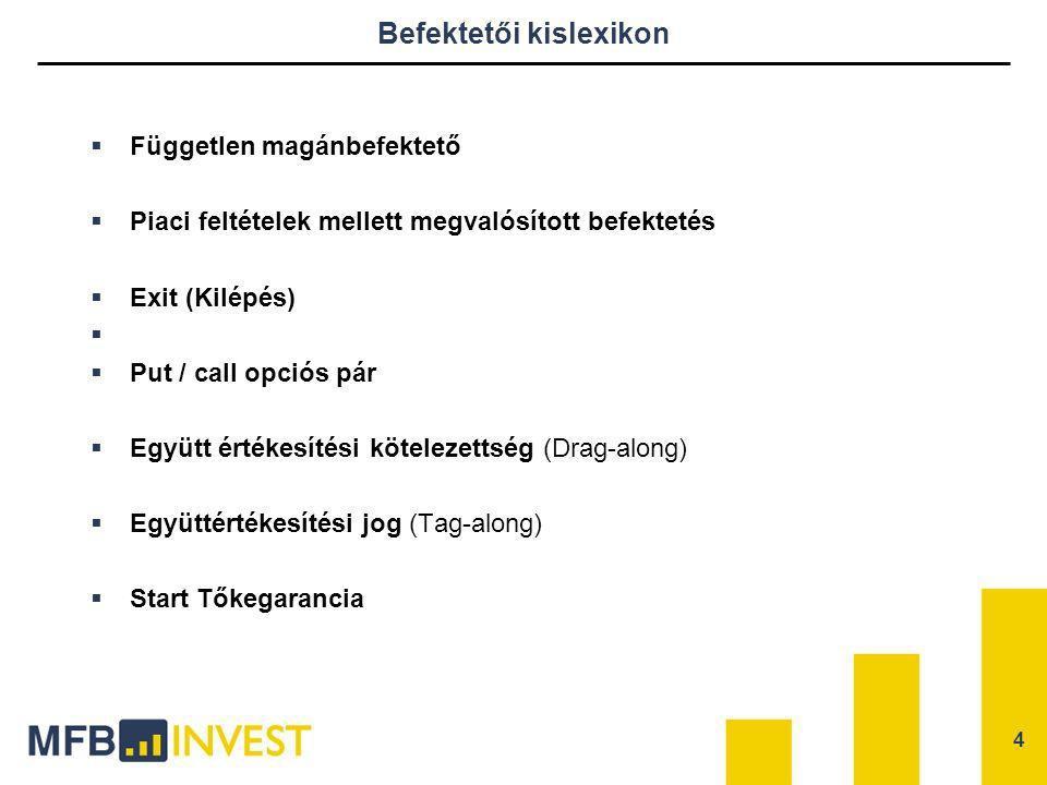 MFB Invest – Rövid áttekintés  Az MFB Invest Zrt.