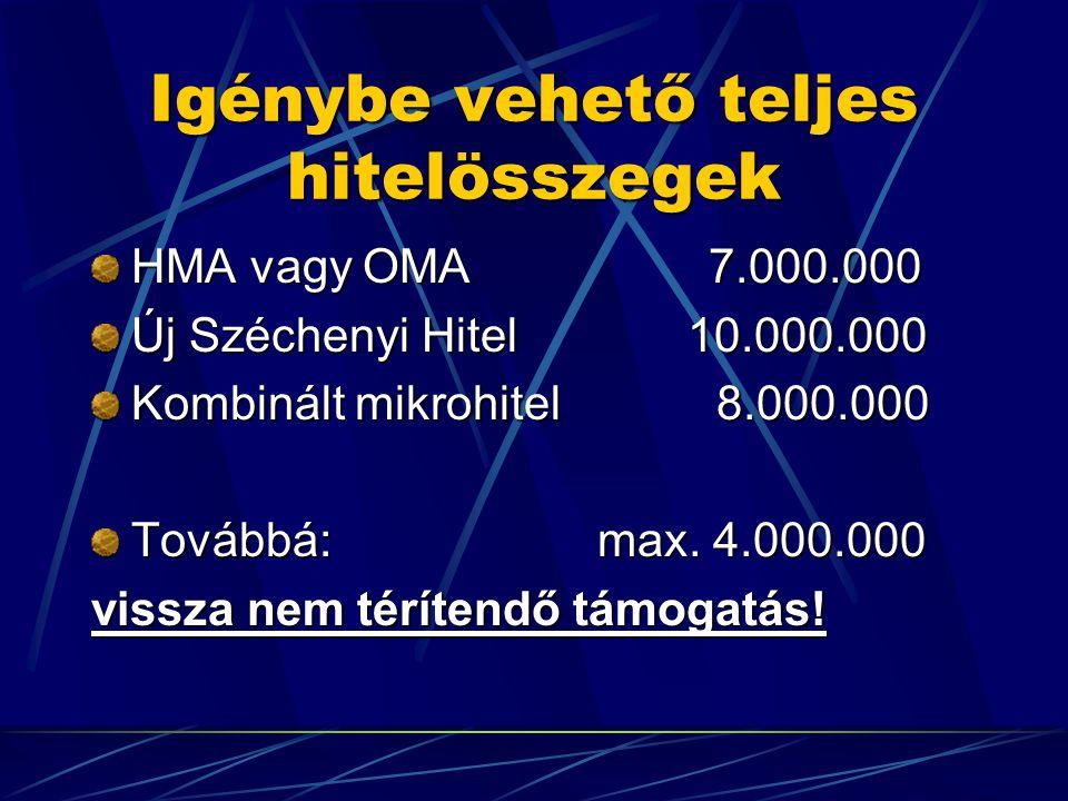 Igénybe vehető teljes hitelösszegek HMA vagy OMA 7.000.000 Új Széchenyi Hitel 10.000.000 Kombinált mikrohitel 8.000.000 Továbbá: max.
